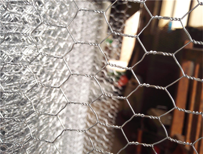 Hexagonal wire mesh/chicken wire mesh